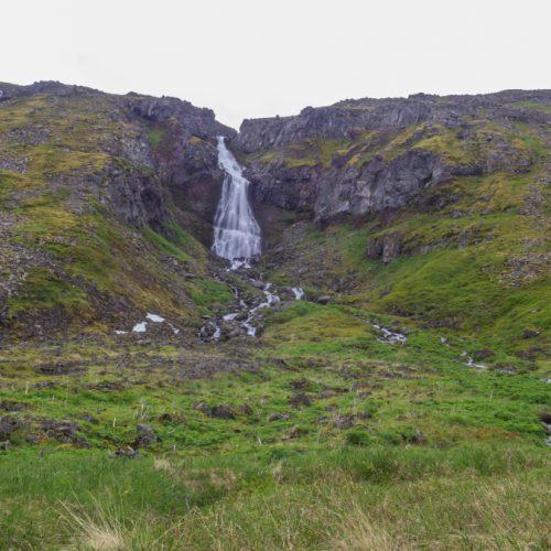 Que hacer en Islandia: Trekking Hornstrandir