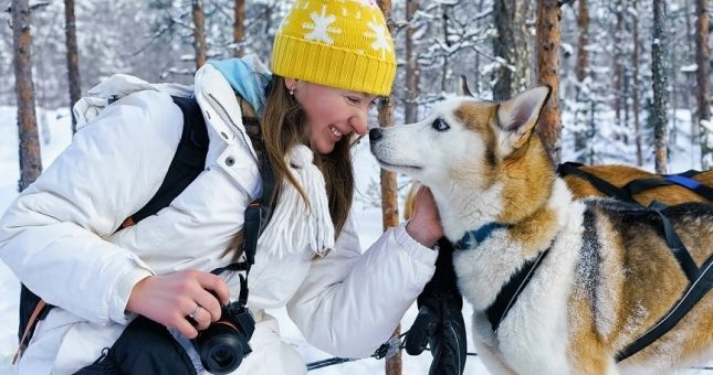 trineo-perros-rovaniemi-2