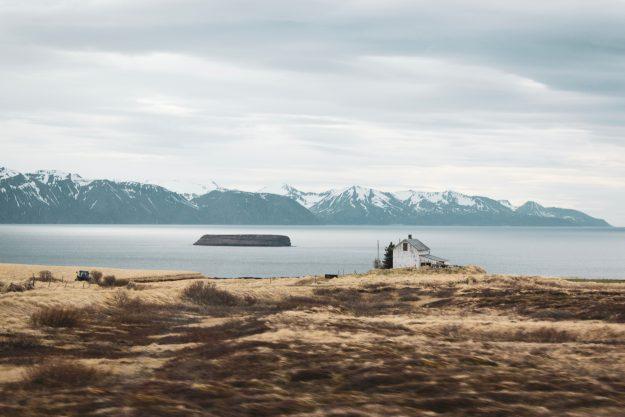 Isla Lundey Frailecillos Islandia
