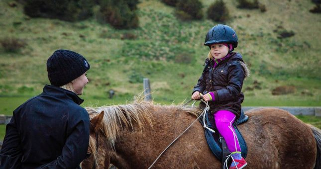 Excursión a caballo en el sur Islandia (Vík)